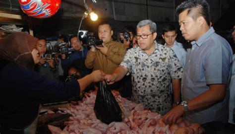 Bibit Ayam Medan kppu telusuri dugaan kartel bibit ayam