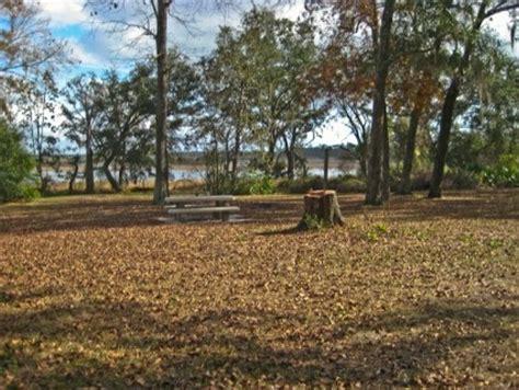 ocala national forest lake delancy east salt springs fl