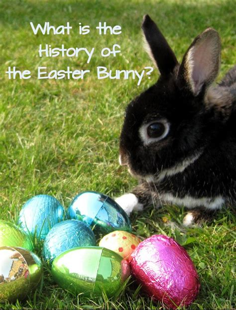 history of easter bunny what is the history of the easter bunny