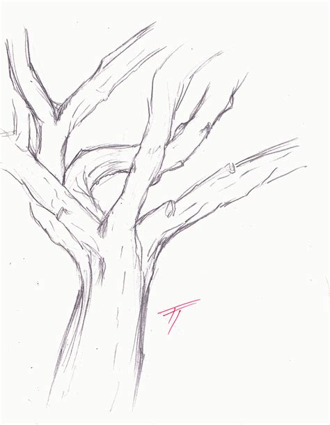 coloring pages tree trunk best photos of tree trunk coloring page tree with leaves