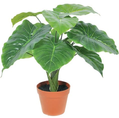 cheap indoor plants popular indoor artificial plants buy cheap indoor artificial plants lots from china indoor