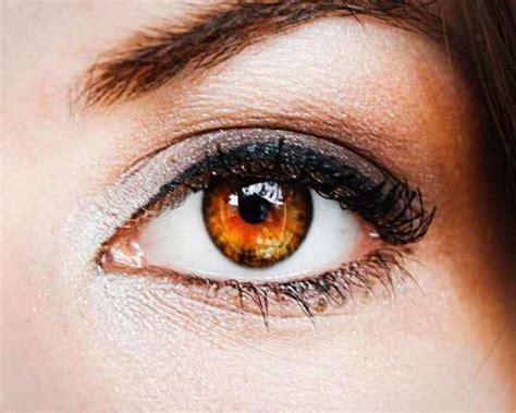honey eye color makeup tips for brown eye makeup for brown