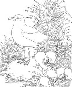 coloring pages utah of utah coloring pages coloring pages