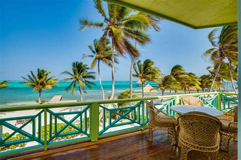 ambergris dive resort best 25 belize diving ideas on ambergris caye
