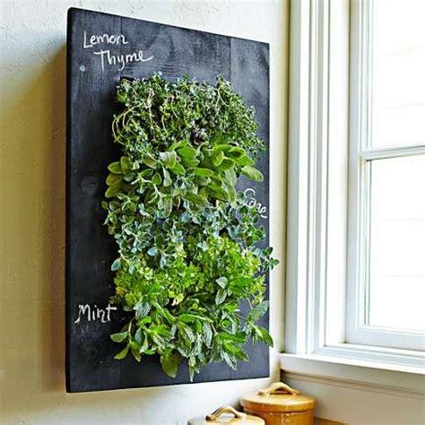 blackboard herb gardens chalkboard wall planter