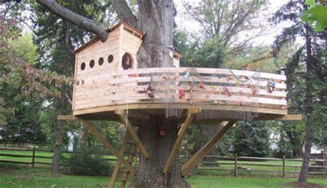 tree house kits to buy tree house yurts cing yurts