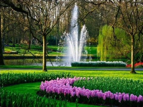 World Beautiful Flowers Garden 50 Most Beautiful Gardens In The World Omusisa