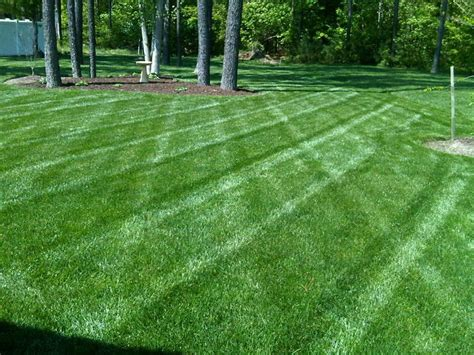 lawn care lawn service akron oh 330 620 6200 4 seasons services