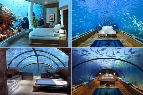 fiji underwater rooms the rooms in poseidon undersea resort 21st century technology