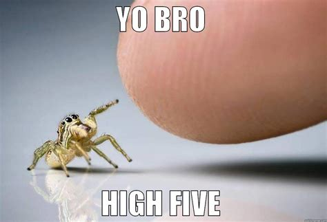 Spider Bro Meme - high five spider quickmeme