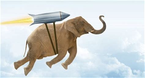 make elephants fly the process of radical innovation books make the elephant fly at strata hadoop world splice
