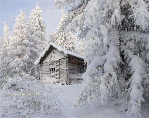 beautiful log cabin in snow cabins pinterest