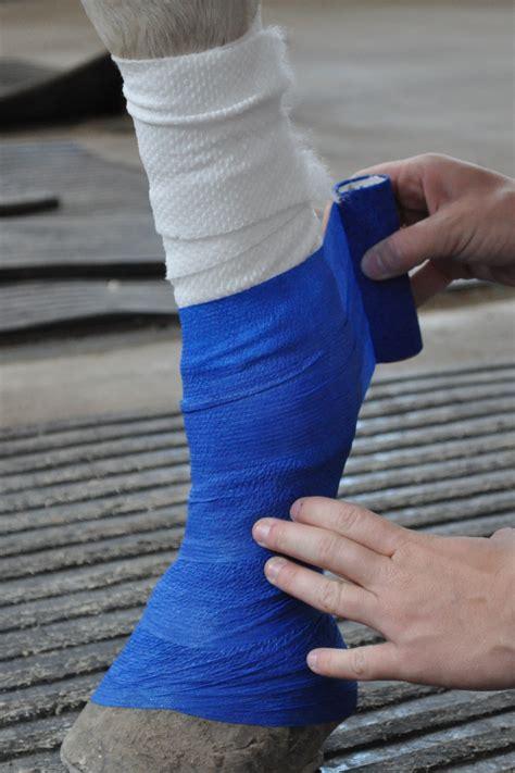 leg wraps leg wraps