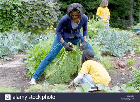 obama help to buy a house us first lady michelle obama hosts a fall harvest of the white house stock photo