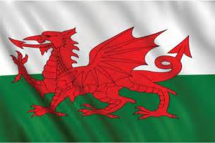 Wales fabric flag 5 ft x 3ft red dragon patriotic flag party store
