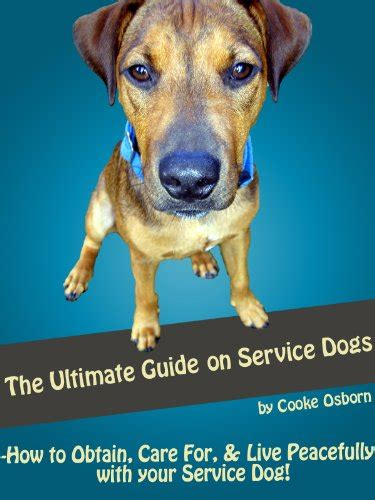 learn how to service dogs how to obtain social security card change name on social security card after marriage