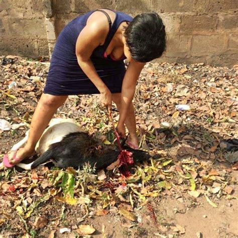 wonderful! photo of nigerian lady slaughtering goat on