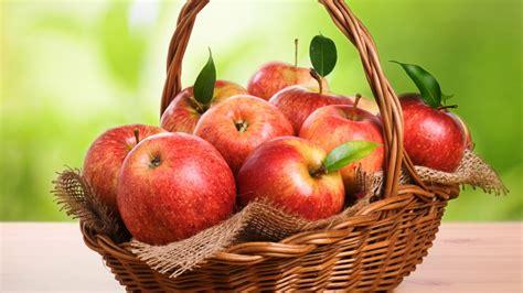 wallpaper apple fruit apple fruit hd wallpaper 0041