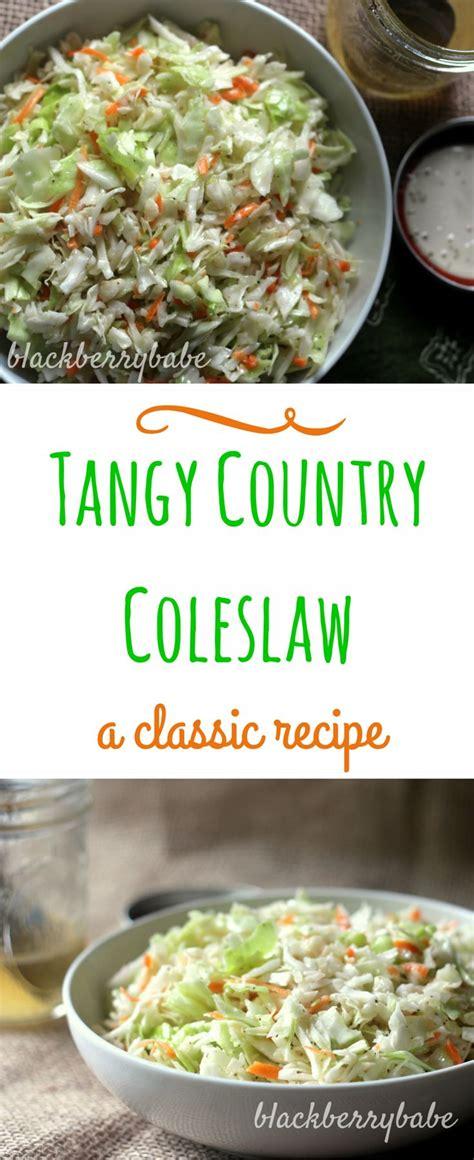 best 25 vinegar coleslaw ideas on pinterest best vinegar based coleslaw recipe oil based