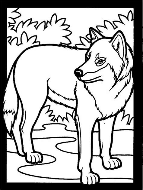 wolves coloring pages wolf coloring pages wildwolfkids