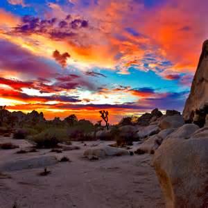 Spot Duvet Cover Quot Joshua Tree National Park Sunset 1 Quot Throw Pillows By