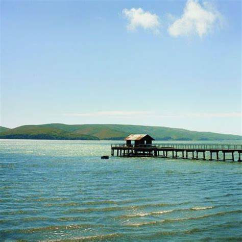tomales bay the bay pinterest