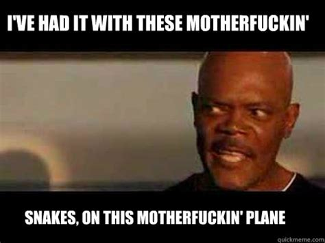 Snakes On A Plane Meme - snakes on a plane gets way too real in frightening a