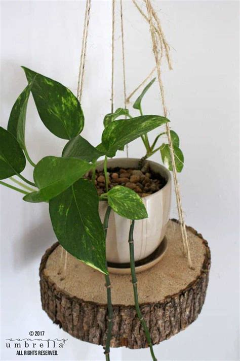 how to make hanging planters how to make diy hanging planter using a wood slice and rope wordzara