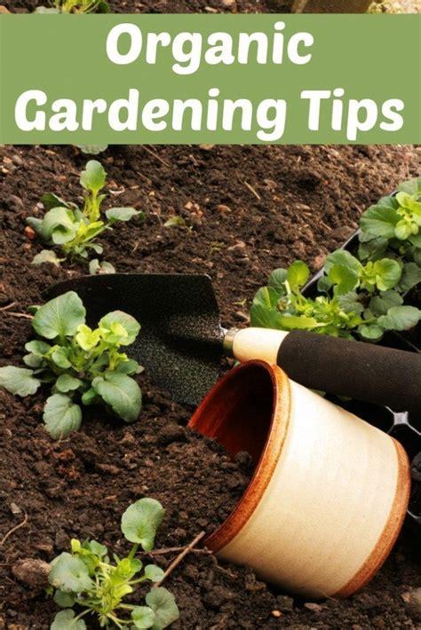 Organic Gardening Tips Organic Gardening Tips Midwest Modern Momma