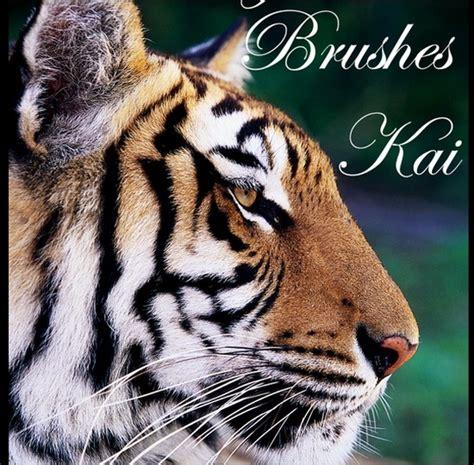 tiger pattern brush photoshop 70 free animal themed photoshop brush sets creative