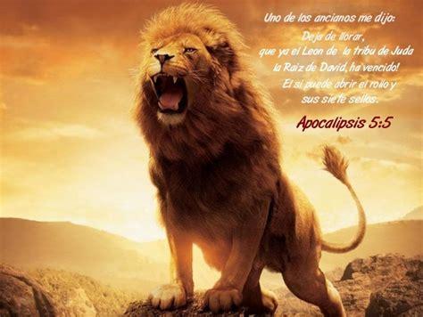 imagenes cristianas leones wallpapers cristianos fondos escritorio papel tapiz