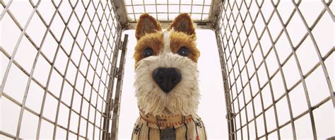 wes isle of dogs wes s isle of dogs is lost in ambition time
