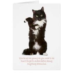 happy birthday card cat birthday card birthday e cards birthday hairstyles