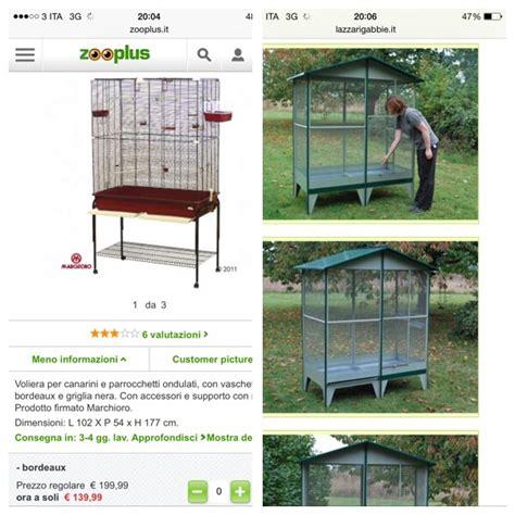 gabbia per pappagalli calopsite gabbia per pappagalli cocorite e pappagallini ondulati