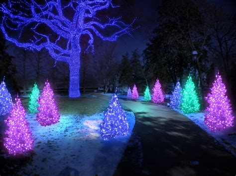 garden glow returns to missouri botanical garden gazelle