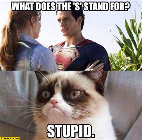 What Does Memes Stand For - what does the s stand for superman stupid grumpy cat