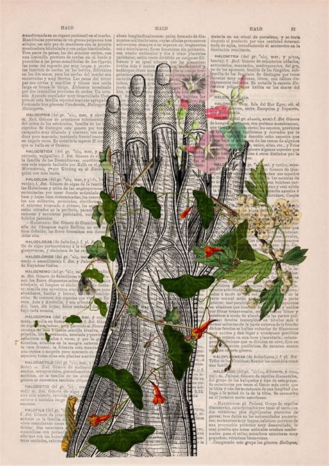 Floral Anatomical Illustrations Breathe New Life Into Old Discarded Books Bored Panda Prints On Book Pages