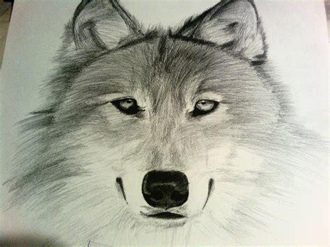 imagenes para dibujar a lapiz con sombra dibujo lobo a sombra de clase de dibujo 2 by enriqueng on