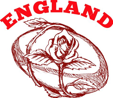 england rugby rose tattoo rugby with flower stock image