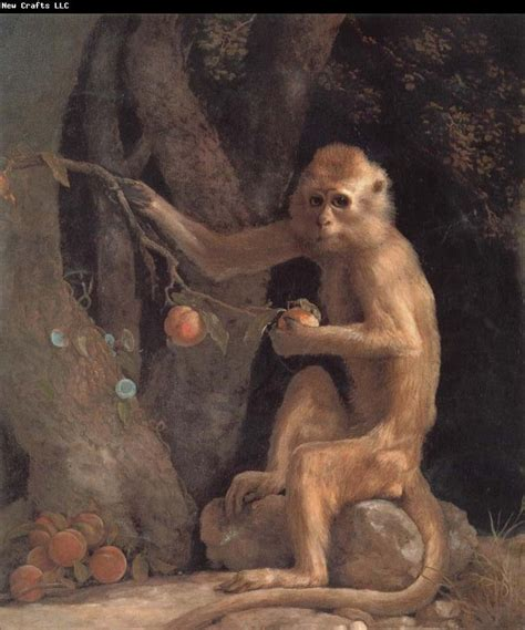 monkey painting 46 best images about of george stubbs on