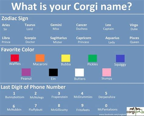 what is your name generator wititudes 25 best ideas about name generator on