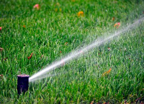 water lawn in fall maintenance checklist 14 mistakes homeowners make every fall bob vila