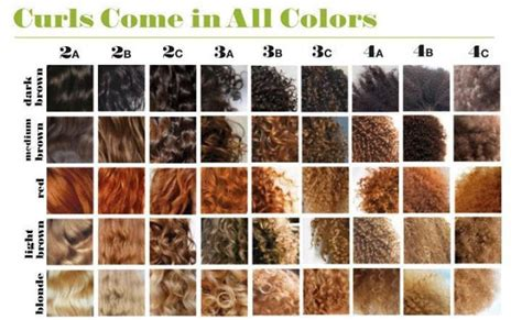 American Hair Types by Frizzy Hair D 233 Terminer Type De Cheveux