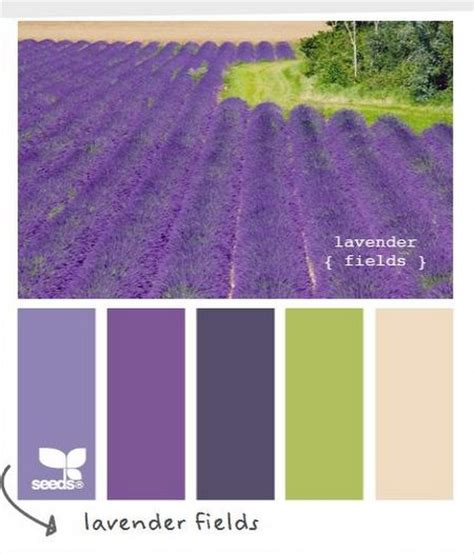 lavender color scheme which colors go with lavender color palette scheme