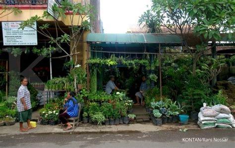 Lu Hias Jawa memburu pusat tanaman hias di 1
