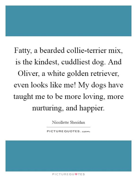 bearded collie golden retriever mix nicollette quotes sayings 10 quotations