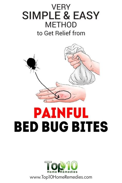 rid  bed bug bites   health beauty rid  bed bugs bed bug bites bed