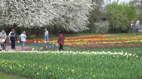 Britzer Garten Tulpenschau by Tulipan Tulpenschau Im Britzer Garten In Berlin Am 24