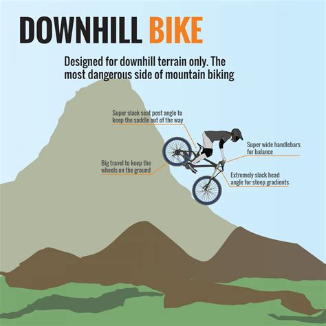 the anatomy of a mountain bike cool biking zone anatomy of a bicycle part vii downhill visual ly