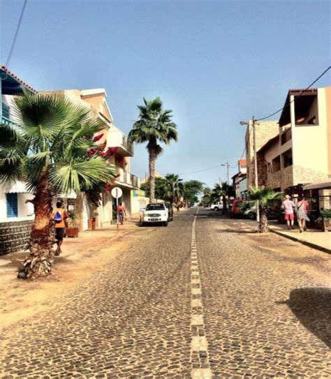 Sals Palm Gardens by Palm Trees On The Streets Of Santa Sal Cape Verde